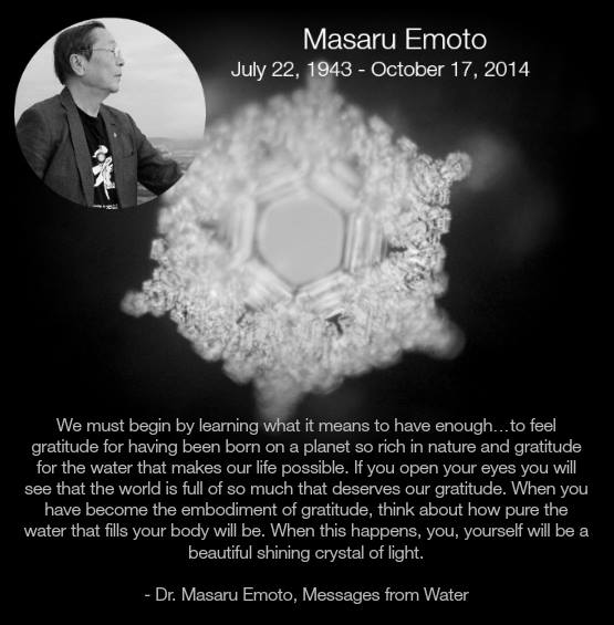Image result for dr emoto