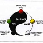 yin-yang_graphic4-150x150